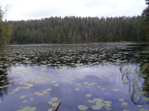 Lago Helsinki finlandia