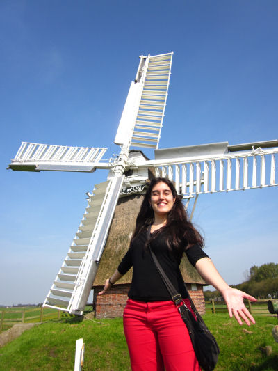 Holanda palencia